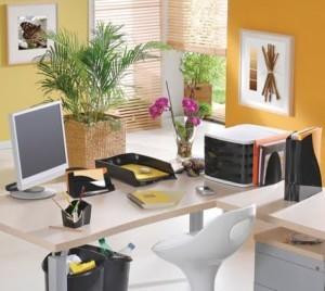 Decorar-consultório-ou-escritório-com-plantas-004-300x268