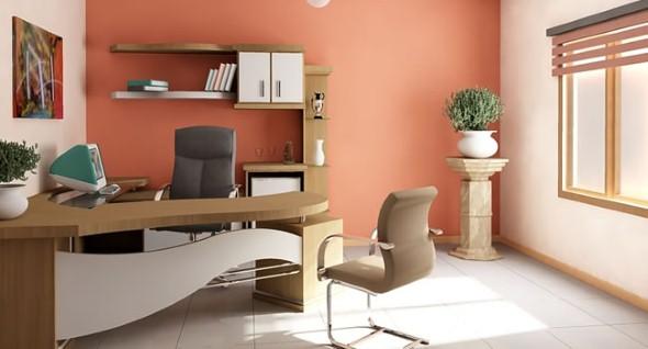 Decorar-consultório-ou-escritório-com-plantas-008