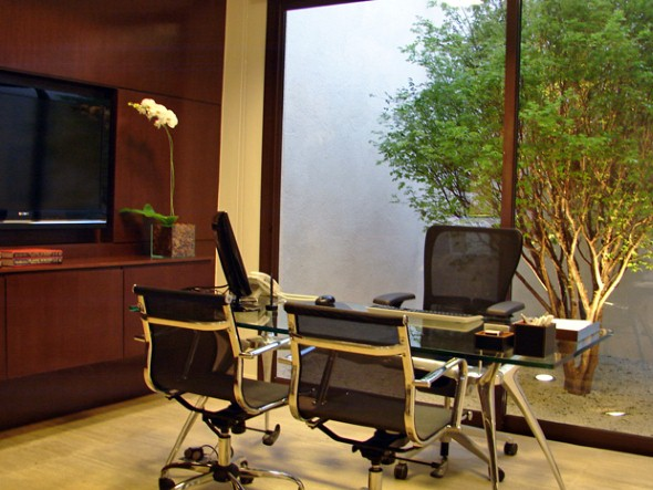 Decorar-consultório-ou-escritório-com-plantas-013